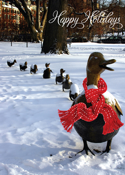 Duck Christmas Cards